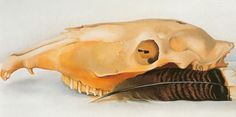 Georgia OKeeffe,  Mules Skull with Feathers. Fine Art Reproduction Oil Painting