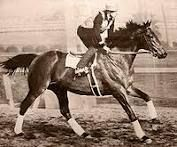 Seabiscuit- Beat War Admiral in match race and 1938 Horse of the Year