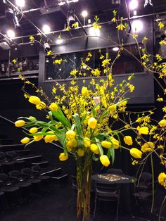 Beautiful Tulips and Forsythia