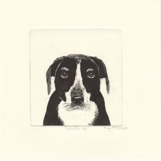 """What's Up' Drypoint Etching by Kay McDonagh.  Original prints available."