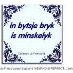 fryske spreuken 122 beste afbeeldingen van Fryske sechjes   Fries, Bullet Journal  fryske spreuken