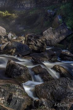 The hard rocks contrast with the soft flow of the water from Spencer Creek, mimicking the highlights and shadows of the dappled forest lighting in Hamilton, Ontario, Canada.
