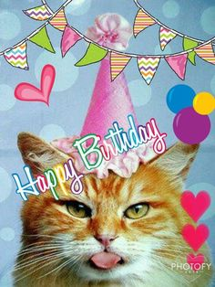 loretta young rogers · birthday/cats · happy birthday cat birthday wishes Cat Birthday Wishes, Happy Birthday Best Friend, Best Birthday Quotes, Happy Birthday Funny, Happy Birthday Gifts, Happy Birthday Messages, Happy Birthday Images, Birthday Pictures, Birthday Animals