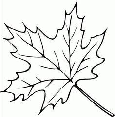 folhas para imprimir | mundo colorido: Imagens de folhas para imprimir e colorir