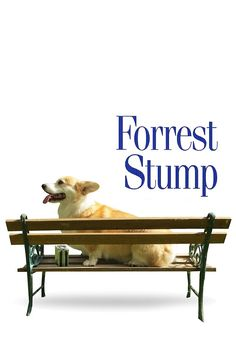 Hello. I'm Forrest. Forrest Stump.