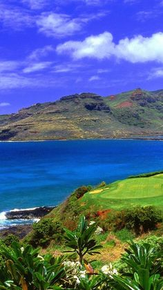 Hawaiian Islands.