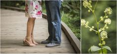 muir-woods-engagement-photography-dana-todd-photography_0052