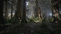 UE4, Forest Collection Pack, by Willi Hammes