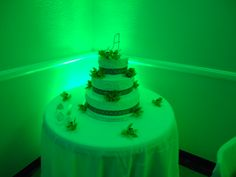 Green Uplighting behind this birthday girls cake. Perfect for weddings and sweet 16's... Make sure to like our page! www.facebook.com/choice1ent
