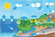 ο κύκλος του νερού - Αναζήτηση Google Science Projects, Science Experiments, Water Cycle, Circle Of Life, Craft Patterns, Preschool, Classroom, Teaching, Education