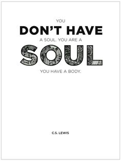 You are a soul.