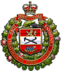 Military Insignia : Canadian Department of National Defence in action: operation POD Canadian Horse, Canadian Army, Canadian History, Military Units, Military Art, Military History, Canada Pictures, Royal Canadian Navy, Army Brat