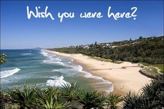 YUP! #destination anywhere! #sun #sand #land or #cruise #hotel or #allinclusive! Contact me to Book! 4164195937