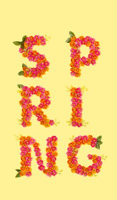 Spring Flowers iPhone Wallpaper — Amy Shamblen Creative