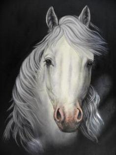 white horses and metal bikinis