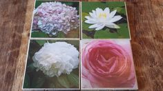 blooms in spring... captured on artisan coasters