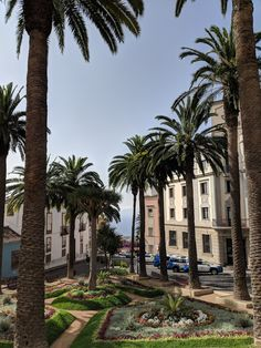 Everything You Need to Know About La Orotava, Tenerife Usa Places To Visit, Places To Travel, Travel Destinations, Tenerife, Travel Pictures, Travel Photos, Backpacking Spain, Spain Culture, Road Trip Usa