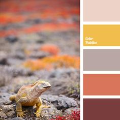 Warm color combination of shades of gray, gray-pink, Indian red and muted orange. This color solution is suitable for the decoration of bedroom, living room, kitchen or bathroom. These color combinations are organic in female wardrobe.