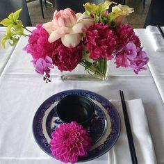 """Lotus Peony Orchid Sarracenia #myviolet#chinadoll"""