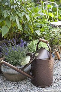 Great Watering Can