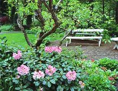 The Country Gardener Ltd. - Landscape Design, Northwest Indiana ...