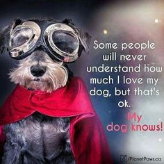 He knows! ❤️🐾❤️