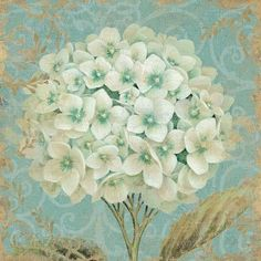 "Lark Manor Hydrangea Square II' Graphic Art on Wrapped Canvas Size: 18"" H x 18"" W x 0.75"" D"