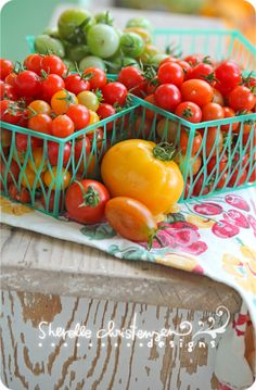 Tomato Canning Recipes