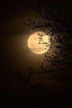 Ciel Nocturne, Digital Foto, Luna Moon, Moon Photos, Moon Pics, Full Moon Pictures, Moon Photography, Good Night Moon, Night Time