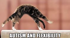 Flexibility and Autism