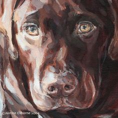 Dog paintings and portraits by PaintmyDog - for more paintings of Labradors and other favourite dog breeds, visit the pet portraits gallery Dog Drawings, Labrador Dogs, Dachshund Art, Horses And Dogs, Labradors, Animal Crafts, Animal Welfare, Diy Stuffed Animals, Dog Portraits