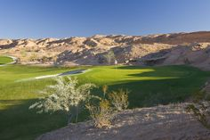 Conestoga Golf Course Mesquite Nevada  we can book you tee times by calling Margi at 1-800-245-8602 in St. George, Utah