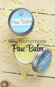 DIY Homemade Paw Balm for Dogs - Hey dog moms! Are you looking for a homemade paw balm recipe that you can easily whip up for your d - Dog Care Tips, Pet Care, Pet Tips, Homemade Dog Food, Dog Paws, Puppy Paw, Diy Stuffed Animals, Goldendoodle, Cockapoo