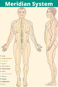 There are 12 major meridians, which are associated with our body's major organs, and along these meridians are 350 acupuncture points. Each of these acupuncture points also correlates to an organ and more specifically, a particular function of that organ. Acupuncture Points Chart, Meridian Acupuncture, Acupuncture Benefits, Reflexology Benefits, Meridian Energy, Meridian Points, Body Pressure Points, Body Chart, Acupressure Treatment