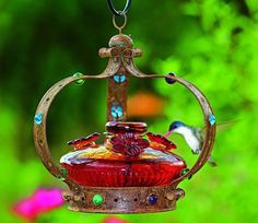Hummingbirds will flock to this Bloom hummingbird feeder. Use bird feeders outdoors. Hummingbird Nectar, Glass Hummingbird Feeders, Hummingbird Food, Wild Bird Feeders, Humming Bird Feeders, All Birds, Little Birds, Renaissance, Home Landscaping
