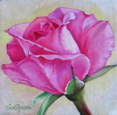 "For Sale: Congratulations Rose by Teri Rosario | $100 | 8""w x 8""h 
