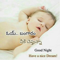 Cute Good Night Quotes, Good Night Funny, Good Night Images Hd, Night Pictures, Good Morning Messages, Good Morning Images, Good Morning Quotes, Sweet Dream Quotes, Telugu Jokes