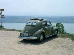 Vw beetle oval