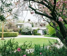 With fertile soil and natural access to water, this winery's garden in Victoria is now a source of inspiration for the next generation. Lush Garden, Tropical Garden, Tropical Flowers, Home And Garden, Australian Garden, Australian Homes, Macedon Ranges, Sensory Garden, Low Maintenance Garden