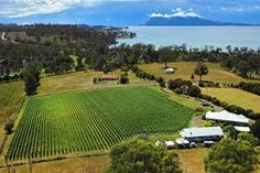 Have you every tried Tasmanian wine? (or do you want to??) Tell us you fave and you could win one of 3 mixed dozens (Australia-only) >> http://www.visitvineyards.com/home/surveys-competitions-win-prizes/win-one-of-three-tasmanian-regional-mixed-wine-cases-february-march-2013