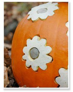 Design Pumpkins Using Metal Cookie Cutters Halloween Pumpkins, Fall Halloween, Halloween Crafts, Happy Halloween, Halloween Decorations, Halloween Ideas, Halloween Party, Decorating Pumpkins Without Carving, Autumn Decorating