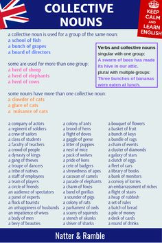 Collective Nouns for animals, people, things - Natter & Ramble Essay Writing Skills, English Writing Skills, English Lessons, Grammar Skills, Advanced English Vocabulary, English Vocabulary Words, Learn English Words, Vocabulary Ideas, English Teaching Materials