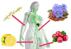 nadmiar wody w organizmie Detox, Healthy Living, Diy, Bricolage, Healthy Life, Do It Yourself, Homemade, Diys, Crafting