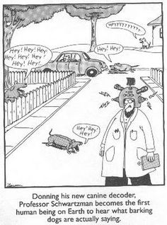 The Far Side (comic): What is the best Gary Larson The Far Side cartoon? Far Side Cartoons, Far Side Comics, Dog Cartoons, Funniest Cartoons, Cartoon Jokes, Cartoon Images, The Far Side Gallery, Funny Dogs, Funny Memes