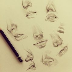 Ah - noses Drawing Practice, Drawing Skills, Drawing Lessons, Drawing Techniques, Figure Drawing, Drawing Sketches, Art Drawings, Sketching, Drawing Studies