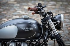 Dutch's Triumph 10