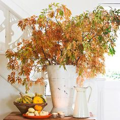 display colorful foliage in a white vase for elegant contrast