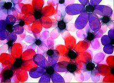 Bloedmooie anemonen