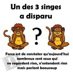 les 3 singes ...