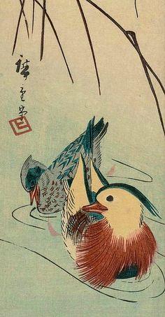 Utagawa Hiroshige I  Mandarin Duck and Reeds, detail  19th century